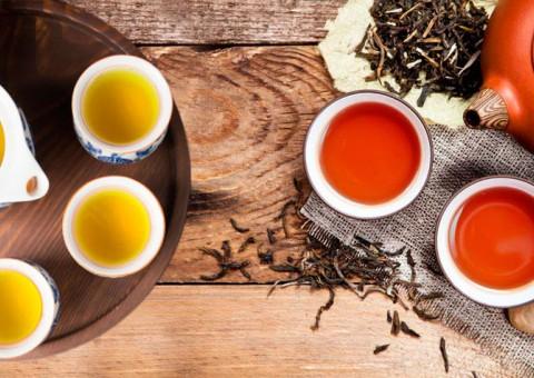 Черный и зеленый чай. В чем разница?