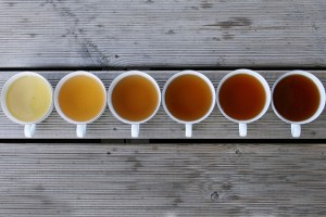 Types of tea. Fermentation Classification of Chinese Tea
