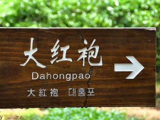 About Da Hong Pao honestly
